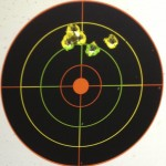 Remington Thunderbolts w/Iron Sights @ 25yds