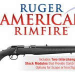 Ruger 8301 American Rimfire 22LR Reviewed