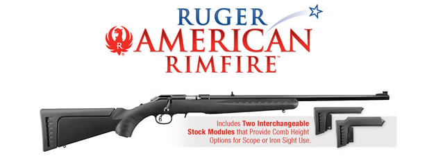 Ruger 8301 American Rimfire 22LR