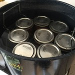 Ball Fresh Preserving Kit Reviewed