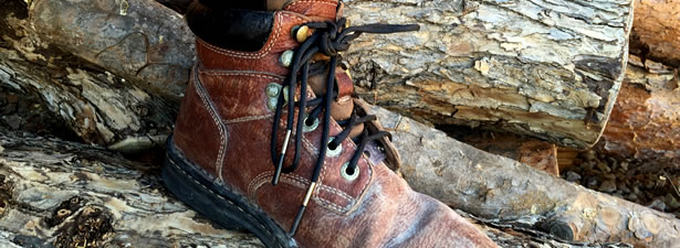Survival Frog Fire Laces