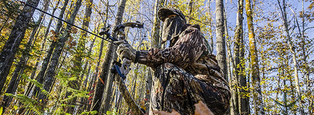 top 7 bow hunting for survival top secrets revealed by experienced bow hunters